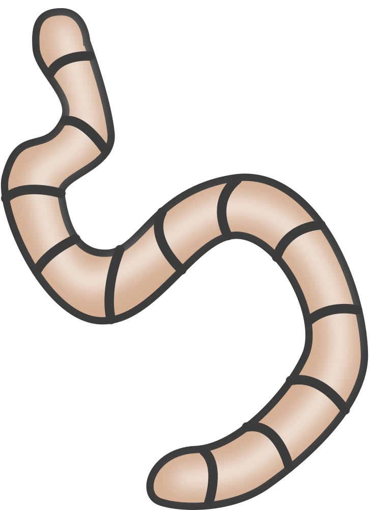 Pictures of earthworms real. Worm clipart vermicomposting