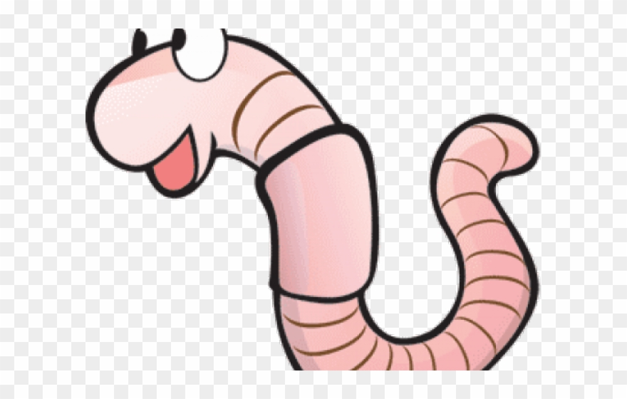 Png cartoon transparent . Worm clipart wiggly worm