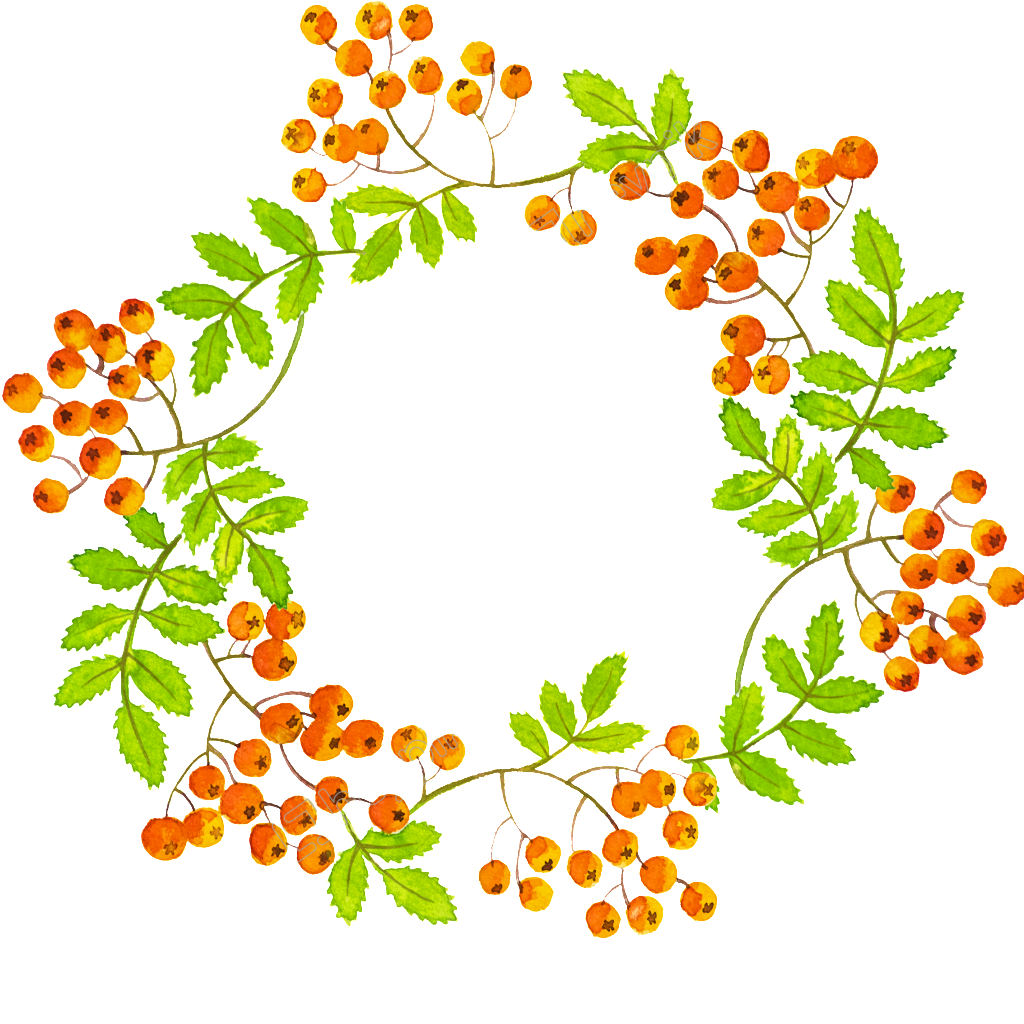 Hand painted beautiful green. Wreath vector png