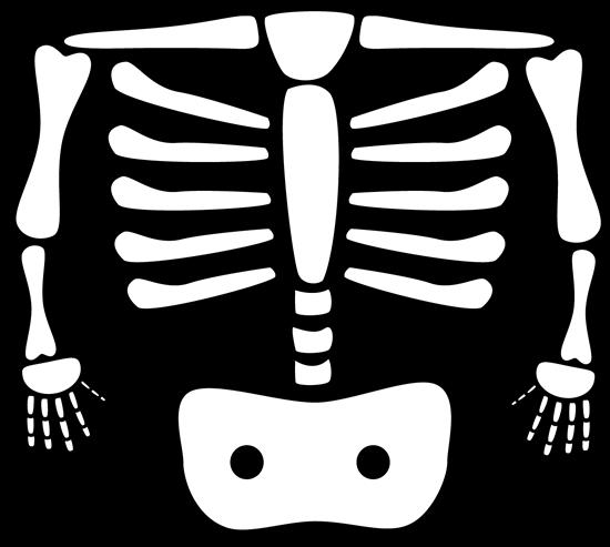Free radiology xrays clip. Xray clipart