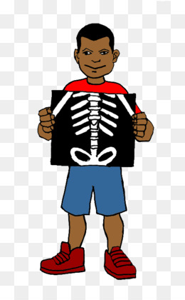Xray clipart. Free download x ray