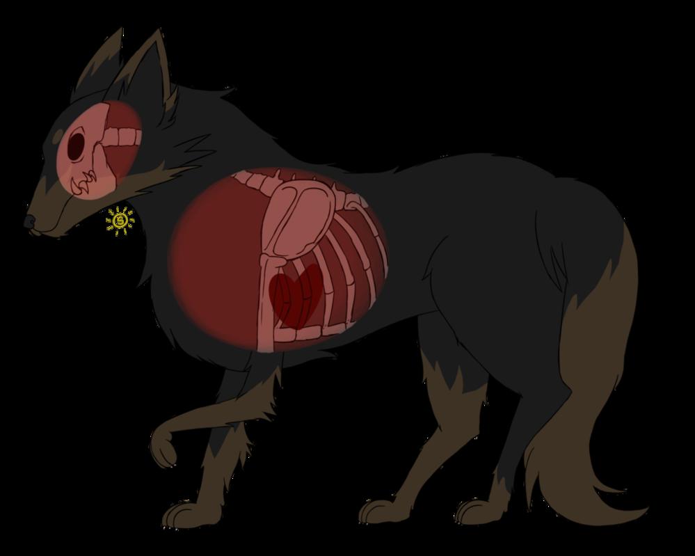 Xray clipart animal xray. Wolf by sunniestsun on
