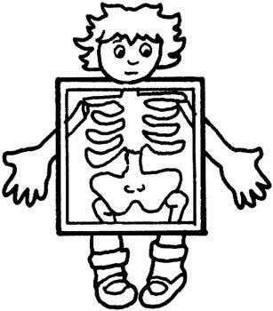 Xray clipart medical. Free cartoon clip art