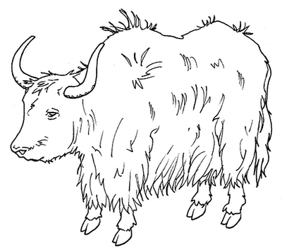 Yak clipart black and white. Portal