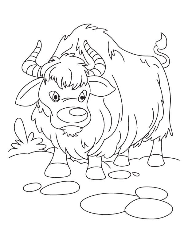 Yak clipart coloring page. Color sheet everest vbs