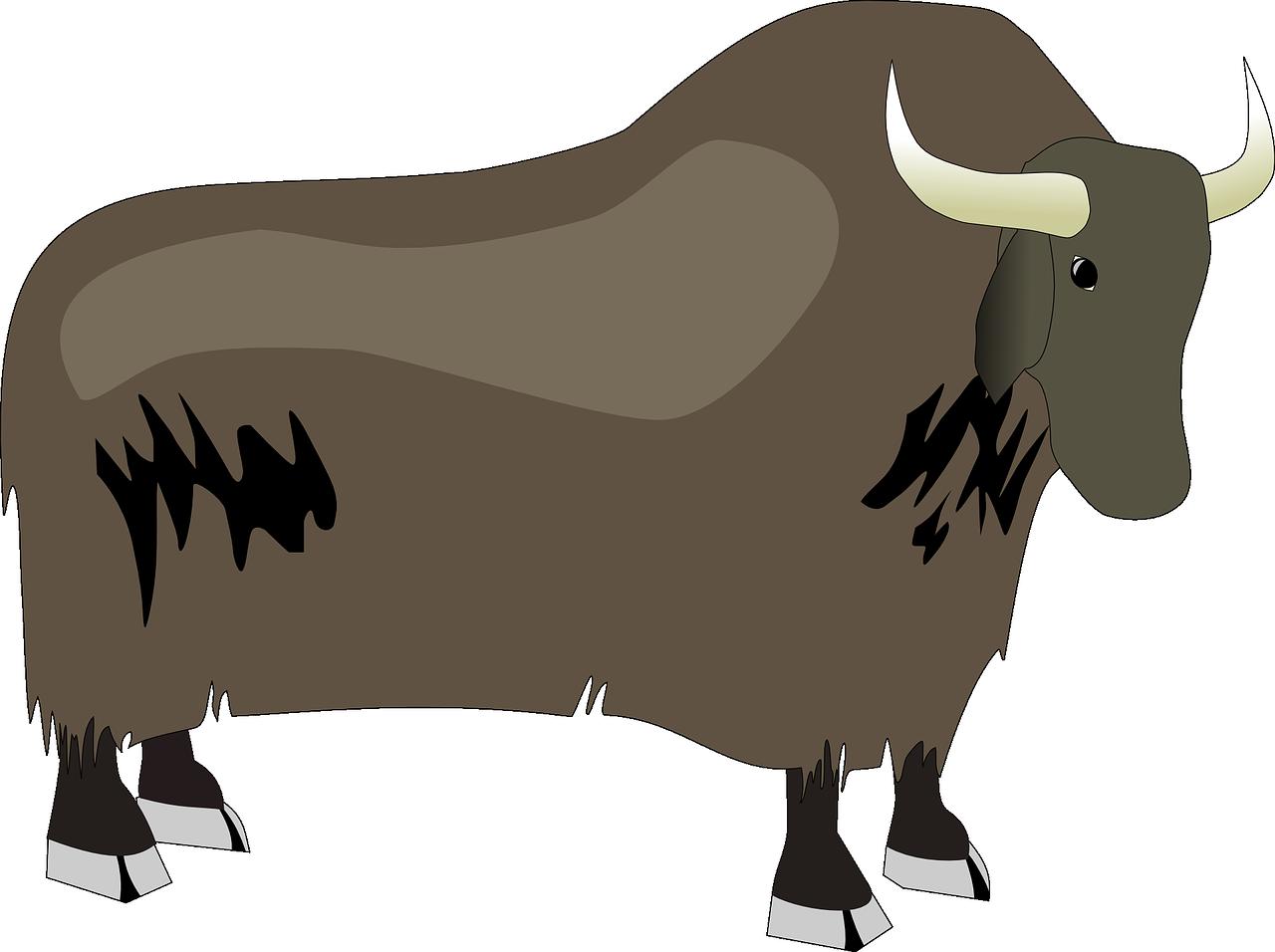 Yak clipart horns. Domestic cattle clip art