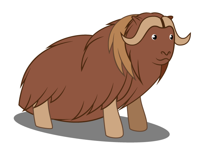 Yak clipart musk ox. What species is your