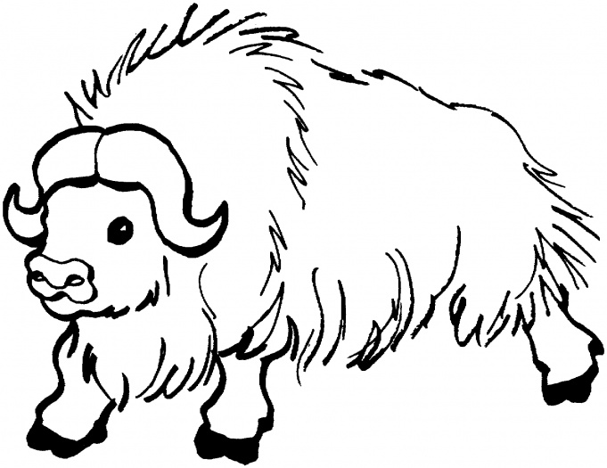 Yak clipart outline. Free black and white