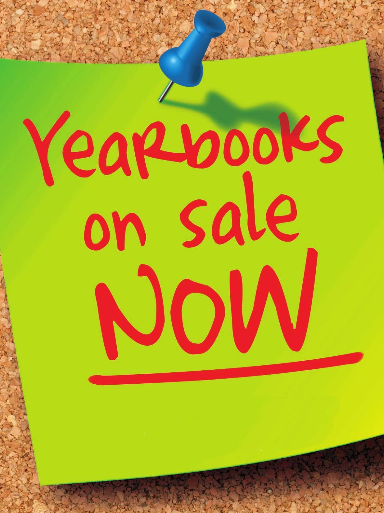 Yearbook clipart flyer. Lifetouch clip art free