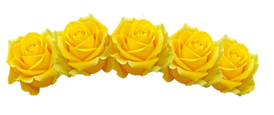 Yellow flower png. Crown image