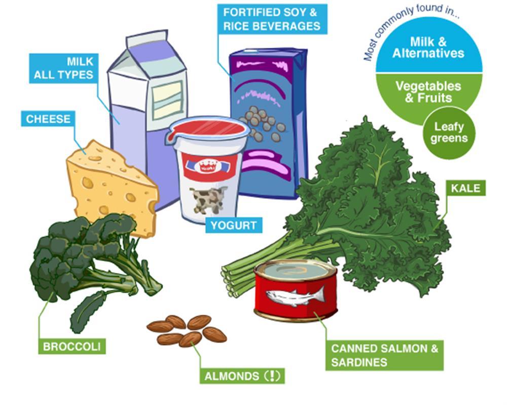 . Yogurt clipart calcium food