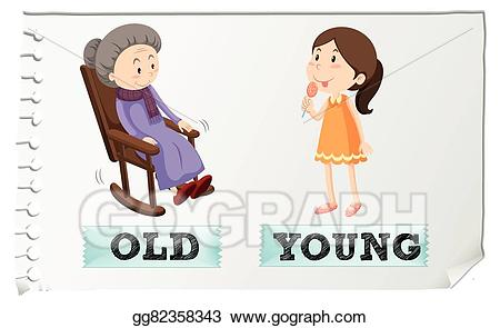 Vector art adjectives old. Young clipart opposite