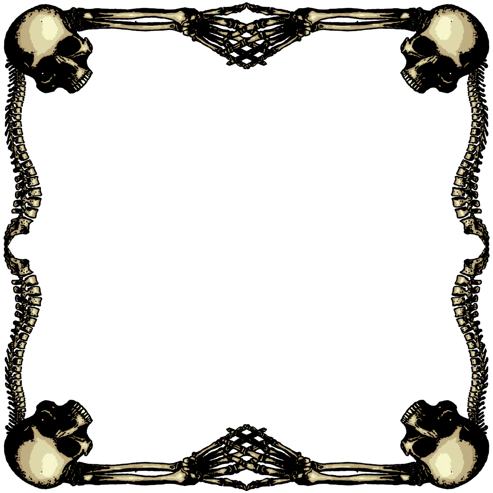 Skeletal frame large by. Zombie clipart border