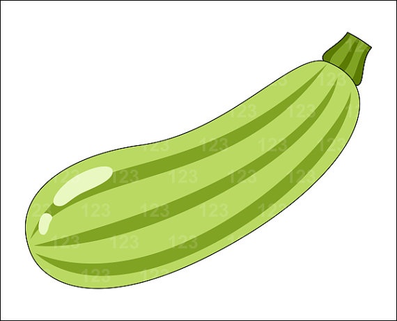 Zucchini clipart. Items similar to vegetable