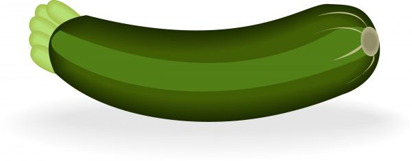Illustrated image of stock. Zucchini clipart