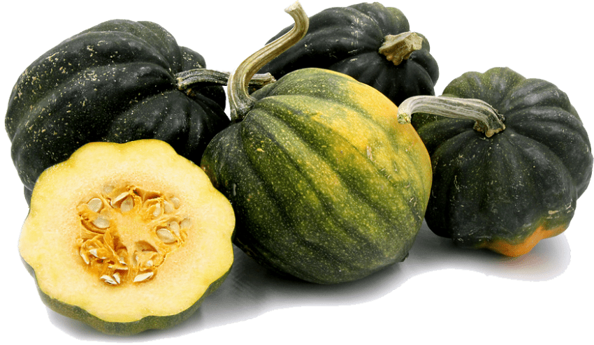 Zucchini clipart acorn squash. Png free images toppng