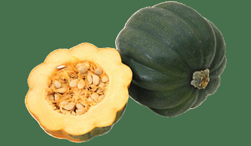 Png pic free images. Zucchini clipart acorn squash