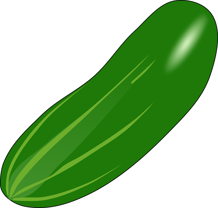 green squash huge. Zucchini clipart cartoon