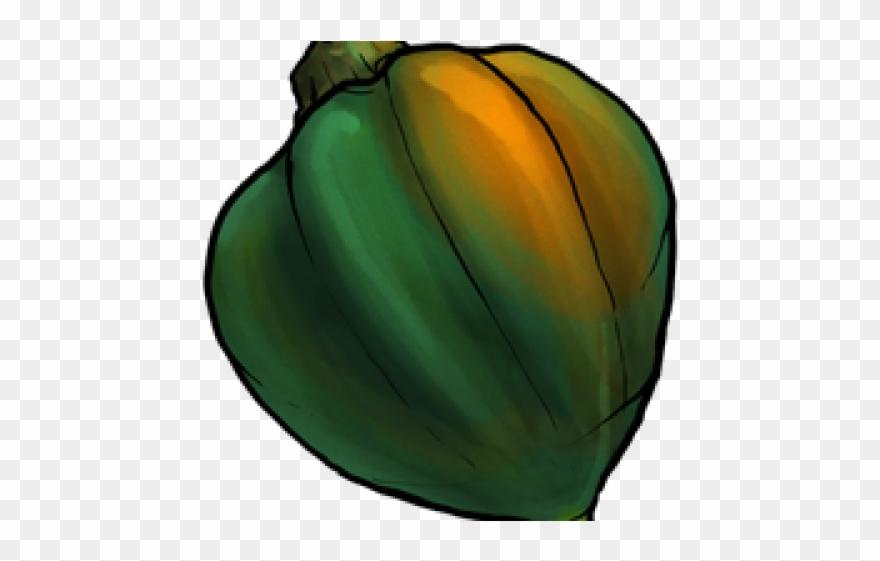 Zucchini clipart gourd. Acorn squash png download