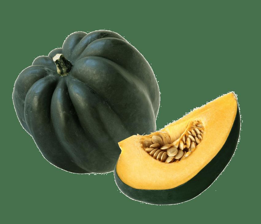 Acorn squash png free. Zucchini clipart gourd