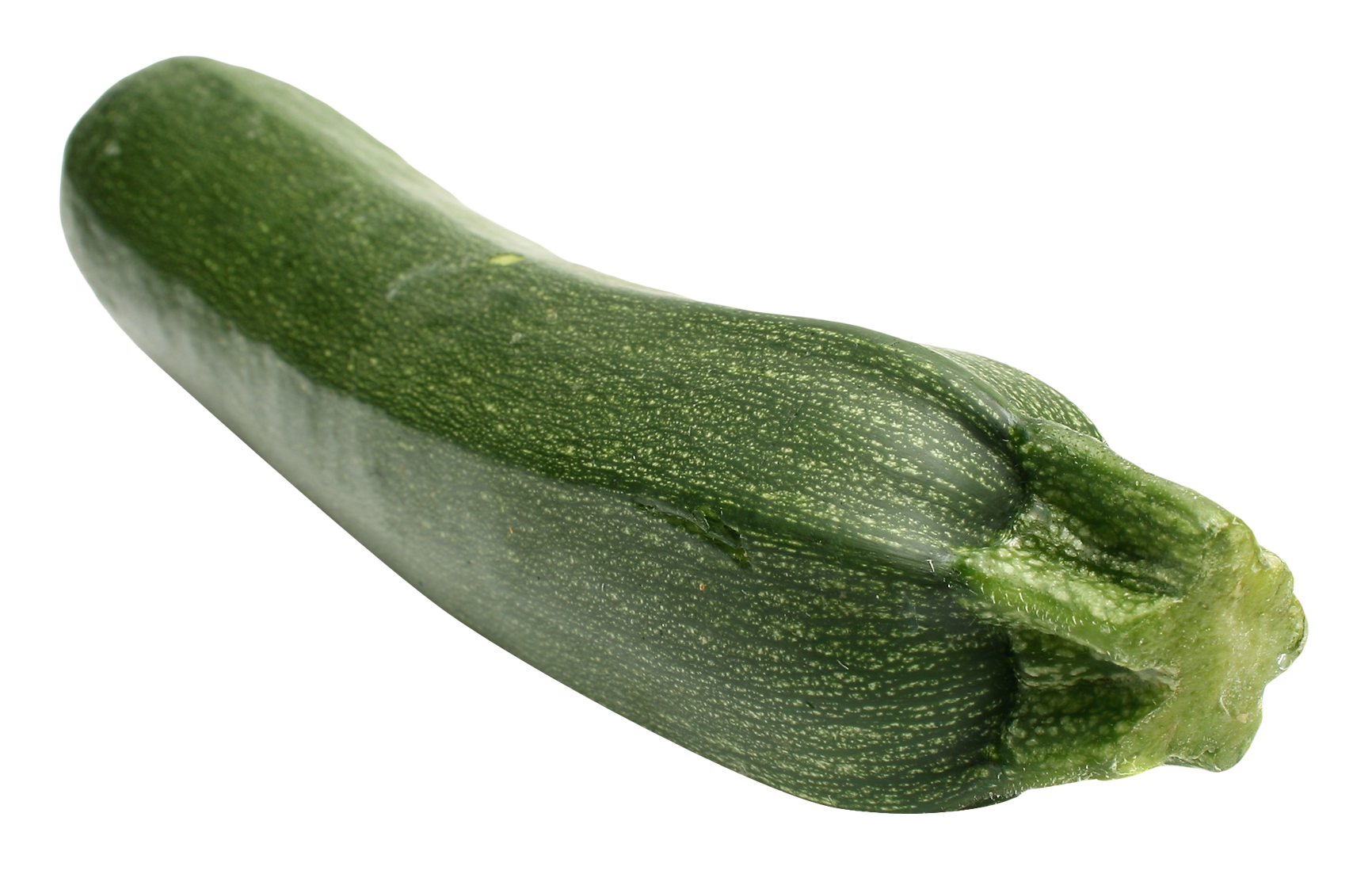 zucchini clipart vegetable