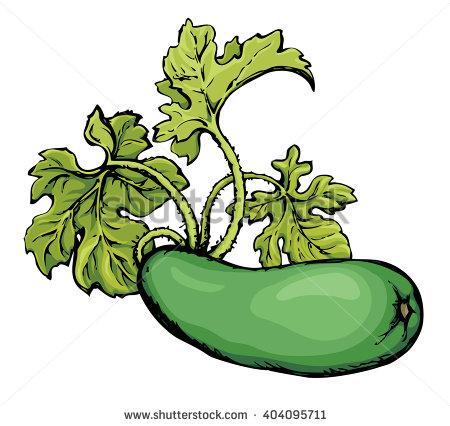 Zucchini clipart zucchini plant. Sixth annual festival middlefield