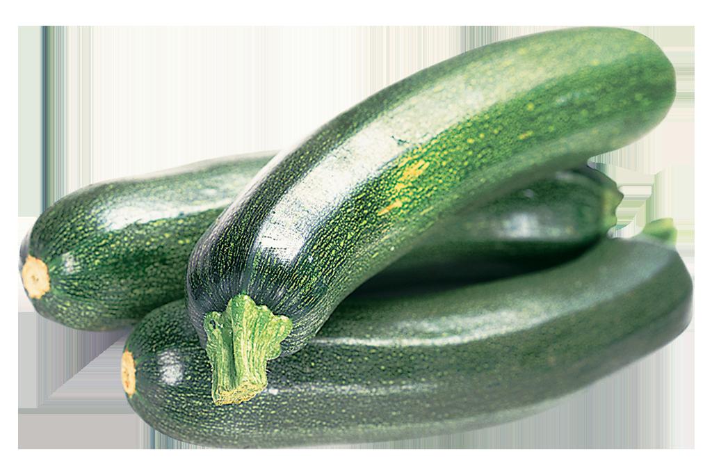 zucchini clipart zuchini