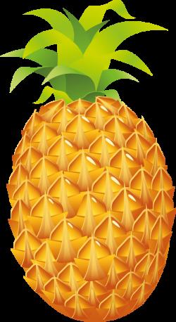 Pineapple clip art - Pineapple clipart photo - NiceClipart.com