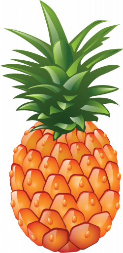 Pineapple PNG image, free download | cliparts ... | Pinterest | Free ...