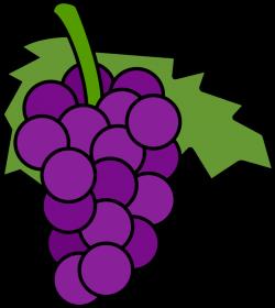 Grapes clipart 3 - Clipartix