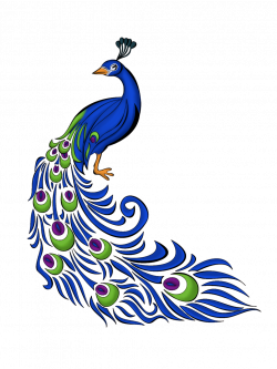 Peacock Feather Vector Free Graphics And Art - JoBSPapa. | Awesome ...
