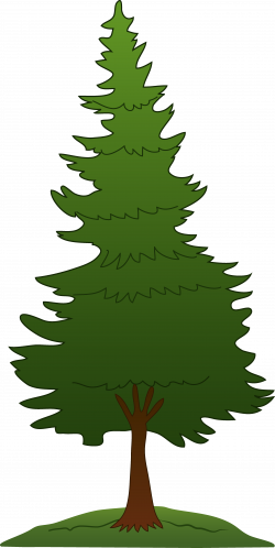 White Pine Tree Silhouette at GetDrawings.com | Free for personal ...
