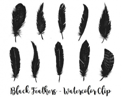 Buy 3 for 9 USD - Black Feathers watercolor, Handpainted watercolor ...