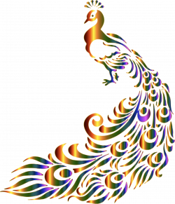 Clipart - Chromatic Peacock 7 No Background