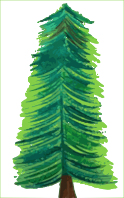 Clipart - Transparent Background Christmas Tree COLOR