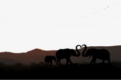 African Grassland Love Background Silhouette Map, African Grasslands ...