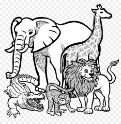 Africa Giraffe Line art Clip art - Cliparts African Animals png ...