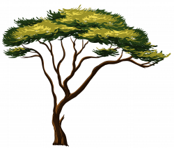 Painted African Tree PNG Clipart Picture | Gallery Yopriceville ...