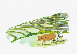 Watercolor Illustrations; Farm Farming, Farmland, Agricultural Land ...