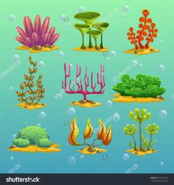 Cartoon Algae, Underwater Elements, Vector Set 2 - 212374027 ...