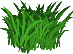 HD Algae Clipart Transparent - Animated Seaweed With ...