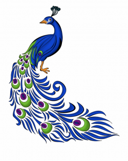 Peacock Clipart Png, Transparent Png Download For Free ...