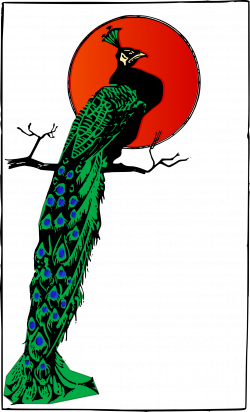 Clipart - Angry Peacock