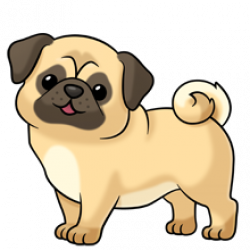 pug ~ soooo many more images at the link of all kinds of animals ...