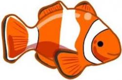 tropical fish clip art | Tropical Islands | Fish template ...