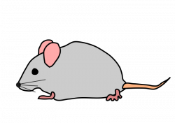 Free Mouse Animal Cliparts, Download Free Clip Art, Free Clip Art on ...