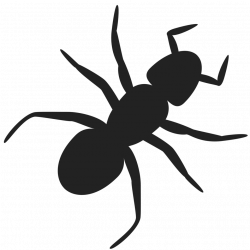 28+ Collection of Ant Clipart Transparent Background | High quality ...