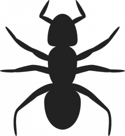 Ant Silhouette Clip Art at Clker.com - vector clip art online ...