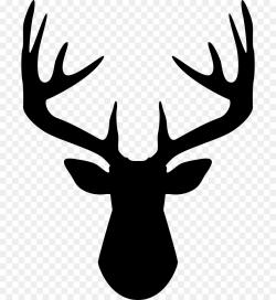 Deer Antler Computer Icons Clip art - deer png download - 762*980 ...