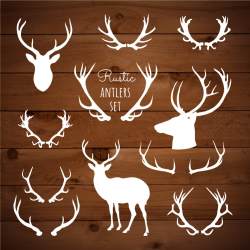 Rustic Clipart Antlers Boho Woodland Clipart Rustic